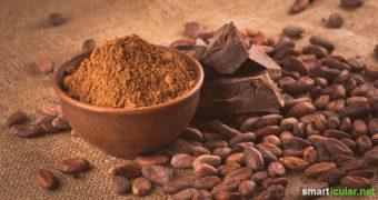 Roher Kakao ist gesund für Herz, Hirn und Nerven und macht glücklich. Mit diesen sieben köstlichen Rohkost-Rezepten kannst du die gesunden Inhaltsstoffe genießen!