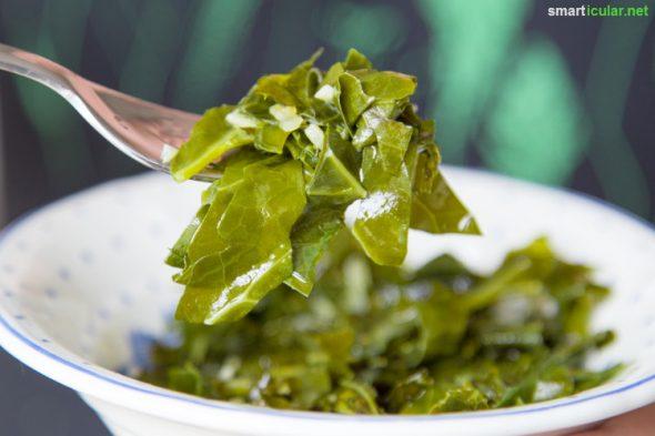 Kohlrabiblätter stecken voller Vitalstoffe und sind deshalb viel zu schade für die Tonne. Mit diesen Rezepten kannst du sie zu schmackhaften Gerichten verarbeiten.