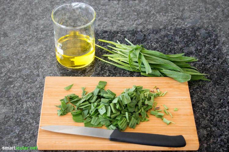 Diese wirksame Salbe gegen Mückenstiche kannst du mit wenigen Zutaten einfach selber machen - preiswert und aus natürlichen Zutaten.