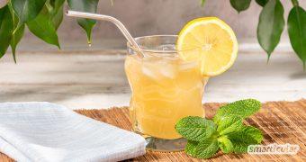 Apfelessig hilft dank seiner gesunden Inhaltsstoffe beim Abnehmen und lindert kleine wie große Beschwerden. Mit der Apfelessig-Limonade wird das säuerliche Hausmittel zum leckeren Genuss!