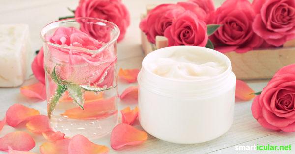 Die Rose erfreut nicht nur mit einem herrlichen Duft, sondern besitzt auch noch heilkräftige Inhaltsstoffe. Du kannst sie dir pur, in einem Tee oder als Hydrolat zunutze machen.