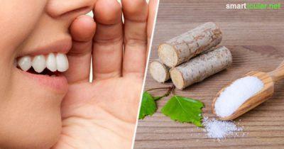 rz nach dem Zähneputzen riecht es schon wieder unangenehm aus dem Mund? Mundgeruch kann viele Ursachen haben - mit diesen natürlichen Hausmitteln wirst du ihn wieder los.