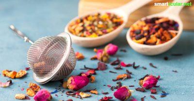 Heilsame Rose: Mit einer Teemischung aus Rosenblütenblättern und Heilkräutern kannst du Entzündungen und kleine Wunden im Mundraum lindern.