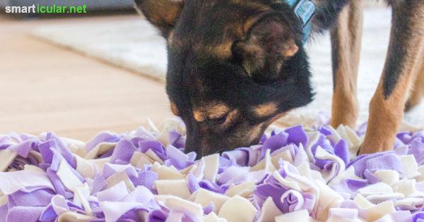Schnüffelteppich für Hunde selber machen aus Stoffresten