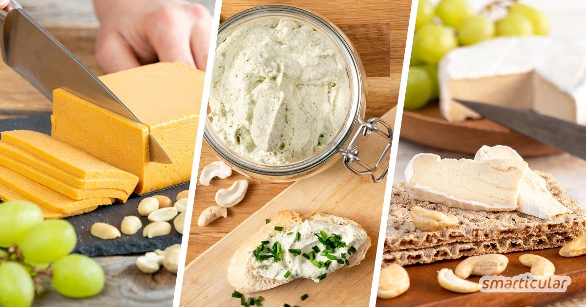 """Veganen Käse selber zu machen, dafür gibt es zahlreiche Rezepte. Die besten findest du hier! Für alle, die sagen: """"Auf Käse verzichten könnte ich nicht."""""""