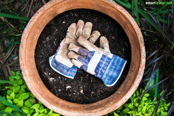 Mit Kaffeesatz kannst du auf natürliche Weise düngen, Schädlinge vetreiben und mulchen. Hier findest du alles Wissenswerte über die nährstoffreichen Kaffeereste im Garten.