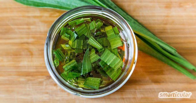 Spitzwegerich gehört zu den klassischen Heilpflanzen bei Atemwegserkrankungen. Aus frischen Blättern und Honig kannst du einen heilsamen Sirup selbst herstellen!