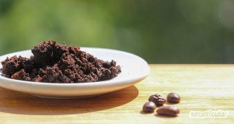 Kaffeesatz im Garten ist vielfältig nutzbar. Hier findest du die besten Tipps für Kaffeesatz als Dünger, zur Abwehr von Schädlingen und mehr.