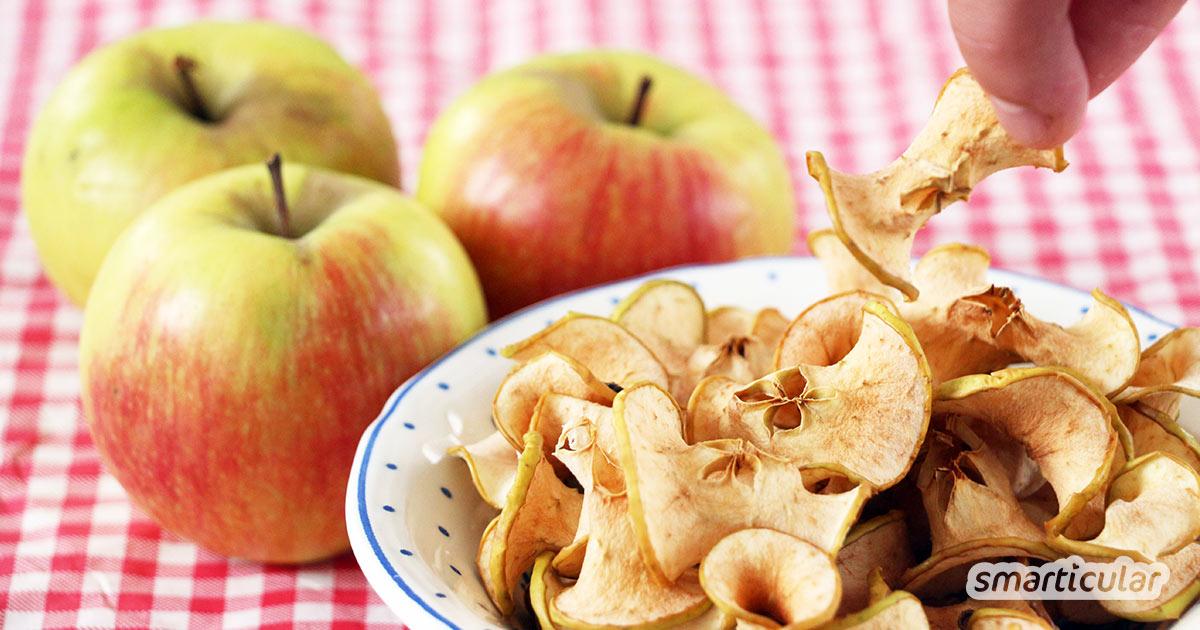 Apfelchips als Alternative zu Kartoffelchips musst du nicht für viel Geld kaufen. Du kannst den gesunden, leckeren Snack einfach selber machen!