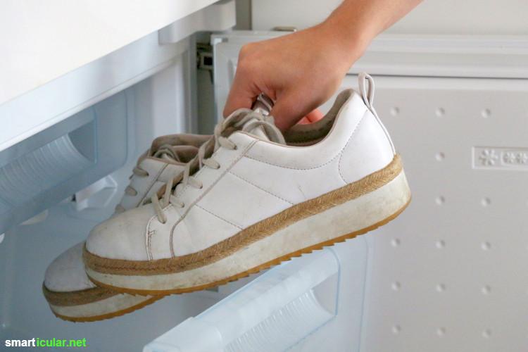 wasserzulauf spülmaschine reinigen