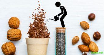 Nüsse, Hülsenfrüchte und Getreide sollte man vor dem Verzehr in Wasser einweichen lassen. Aber warum überhaupt? Und wie lange? Hier findest du eine Übersicht aller Einweichzeiten.