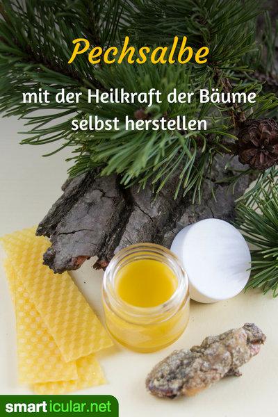 Pechsalbe enthält die Heilkräfte des Waldes - das fast vergessene Heilmittel für viele Beschwerden kansnt du ganz einfach selber machen.