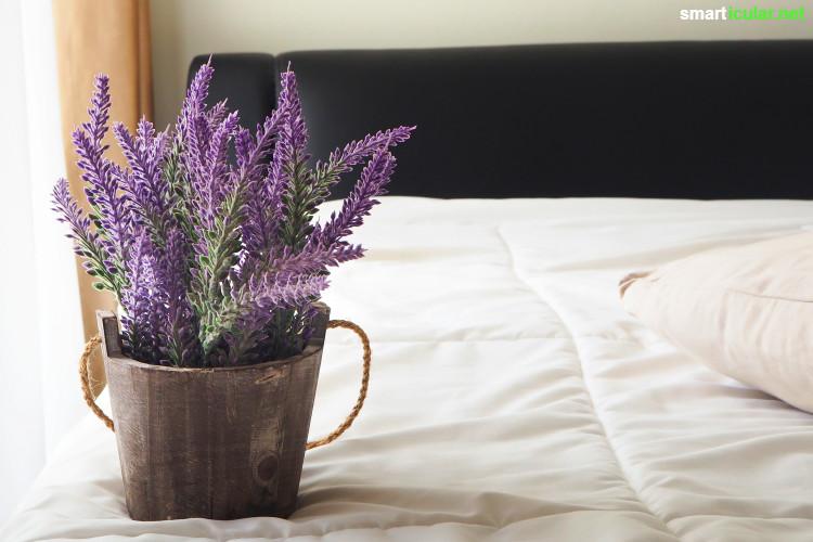 Nice Schlafzimmer Pflanzen 2 #2: Mit Den Richtigen Pflanzen Im Schlafzimmer Sorgst Du Für Gute Luft Und  Erholsamen Schlaf - Viel