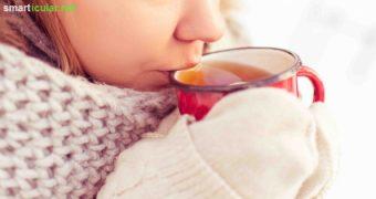 Eine Mandelentzündung ist lästig und schmerzhaft. Mit diesen 7 Tipps kannst du dein Immunsystem stärken und die Entzündung auf natürlichem Wege lindern.