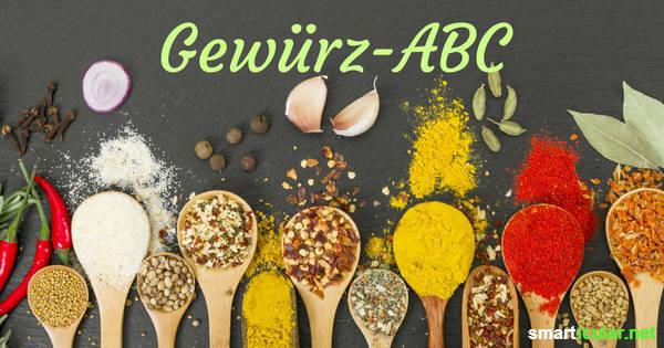 So viele verschiedene Gewürze, aber du weißt nicht, wofür du sie verwenden kann? Lass dich von unserem kleinen Gewürz-ABC inspirieren, damit du immer weißt, welche Gewürze zu welchen Gerichten passen!