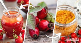 Hagebutten gehören zu den regionalen Superfoods und lassen sich vielfältig verarbeiten und haltbar machen. Hier findest du die besten Rezepte mit Hagebutten.
