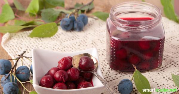 """Mit diesem herzhaften Rezept für eingelegte Schlehen kannst du regionale und gesunde """"falsche Oliven"""" selbst herstellen."""