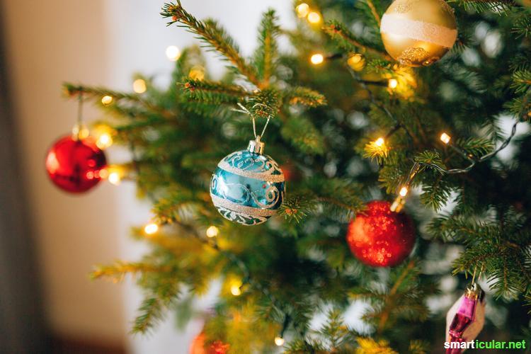 Wie wäre es mit einem lebenden Weihnachtsbaum? Mit diesen Tipps übersteht dein Bäumchen im Kübel unbeschadet die Weihnachtszeit.