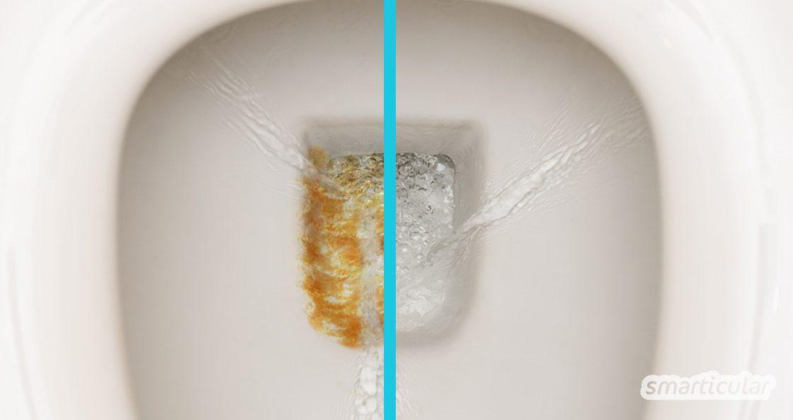 Bist du mit allen bisherigen Maßnahmen zur Beseitigung von Urinstein gescheitert? Diese Hausmittel helfen effektiv und sind dabei auch noch preiswert und umweltfreundlich.