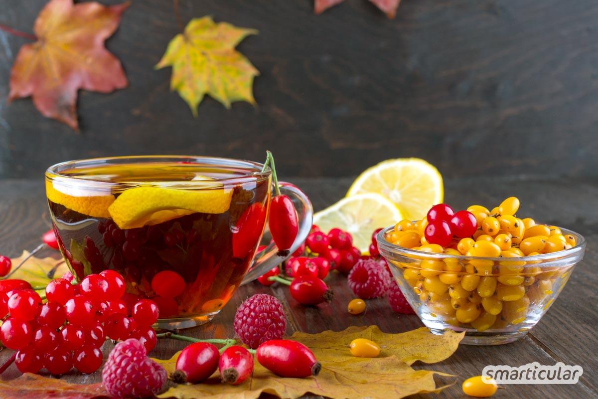 """Vitamin C ist mehr als nur """"Erkältungsvitamin"""". Wie du den Bedarf durch Lebensmittel, die reich an Vitamin C sind, decken kannst, erfährst du hier."""