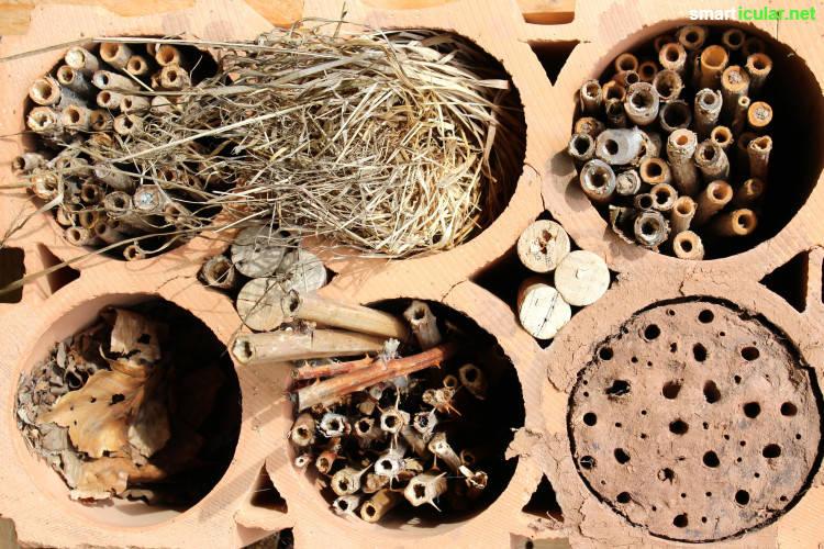 ein insektenhotel selber bauen anleitung und tipps was zu beachten ist. Black Bedroom Furniture Sets. Home Design Ideas