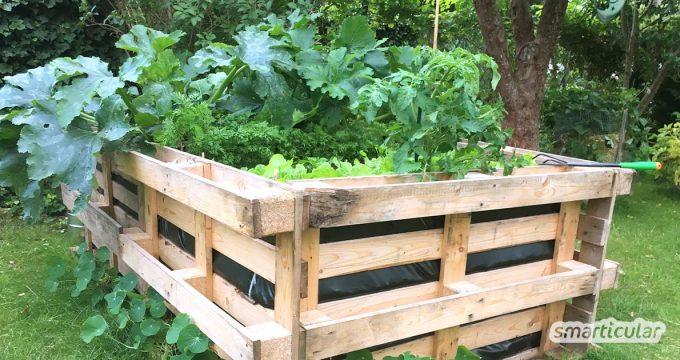 Gemüse und Kräuter anbauen - mit einem Hochbeet aus Paletten geht das ganz einfach, preiswert und ohne dich auch nur einmal bücken zu müssen!