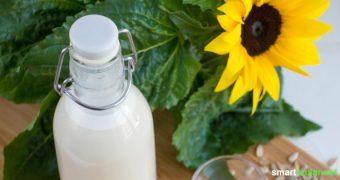 Sonnenblumenmilch als vitalstoffreiche, vegane und regionale Alternative zu Kuhmilch lässt sich leicht selbst herstellen - Rezept mit Schritt für Schritt Anleitung.