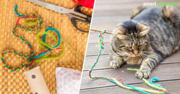 Fabulous Katzenspielzeug selber machen - Katzenangel, Leckerlirolle ZH84