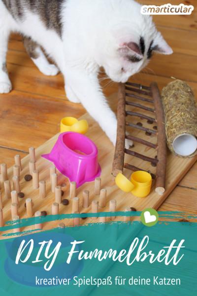 Statt deinen Katzen Leckerlis im Napf zu geben, kannst du sie auch spielerisch anbieten - zum Beispiel mit einem selbst gebastelten Fummelbrett.