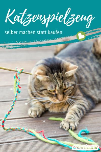 Katzen lieben es zu spielen! Umso schöner, dass wir mit selbst gebasteltem Spielzeug zu ihrem Wohlbefinden beitragen können. Dieser Beitrag liefert einfache Ideen.