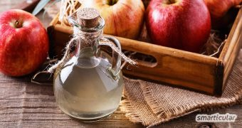 Essig aus Äpfeln oder anderen Früchten und Fruchtabfällen wie Schalen und Kernen herstellen ist einfacher als gedacht. So machst du deinen eigenen Essig!