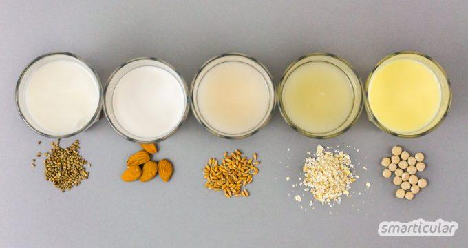 Pflanzenmilch und Pflanzendrinks kannst du einfach preiswert selber machen mit diesen 14 einfachen Rezepten für vegane Milch aus Getreide, Nüssen und Co.