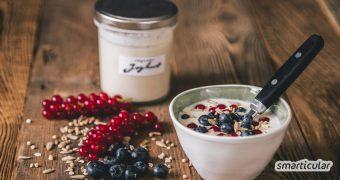 Aus Pflanzenmilch lässt sich genauso wie aus Kuhmilch mit den richtigen Kulturen ganz einfach ein köstlicher Joghurt herstellen - auch ohne extra Joghurtmaschine.