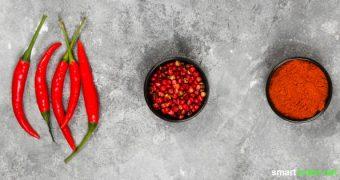 Scharfes Essen ist gesund, macht glücklich und hilft beim Abnehmen. Was davon stimmt, und wann sollte man mit scharfen Gewürzen eher vorsichtig sein?
