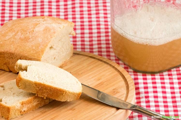 Backhefe selber machen statt kaufen: Mit diesem einfachen Rezept für Wilde Hefe (Hefewasser) kannst du mit geringem Aufwand frische Hefe selbst herstellen und weiter vermehren.