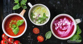 Kalte Suppen sind besonders schnell zubereitet und eignen sich wunderbar als Lunch-to-go, nicht nur im Sommer! 5 internationale Rezepte für würzige, erfrischende Suppen ohne Kochen.