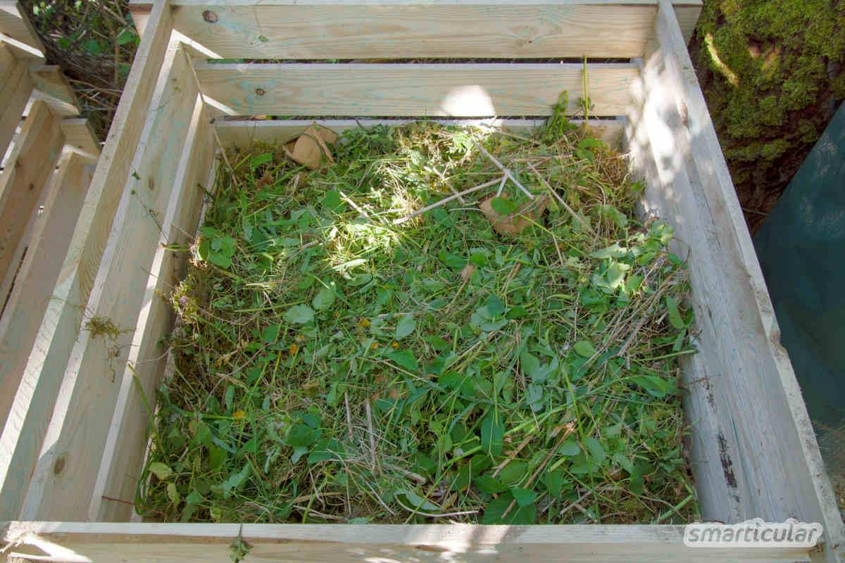 Rasenschnitt landet oft in der Bio-Tonne. Dabei lässt sich das nährstoffreiche Grün noch vielfältig verwerten - 6 praktische Tipps!