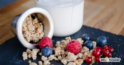 """""""Joghurt mit der Ecke"""" ist zwar praktisch, hinterlässt aber auch besonders viel Verpackungsmüll. Mit dieser Anleitung kannst du eine abfallfreie Alternative zum beliebten Snack ganz leicht selber machen."""