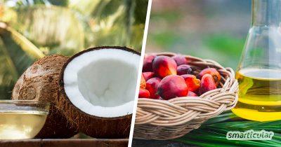 Immer mehr Hersteller wollen auf Palmöl verzichten und verwenden stattdessen Kokosöl in ihren Produkten. Aber ist Kokosöl tatsächlich die bessere Alternative? Hier werden ökologische und gesundheitliche Faktoren überprüft.