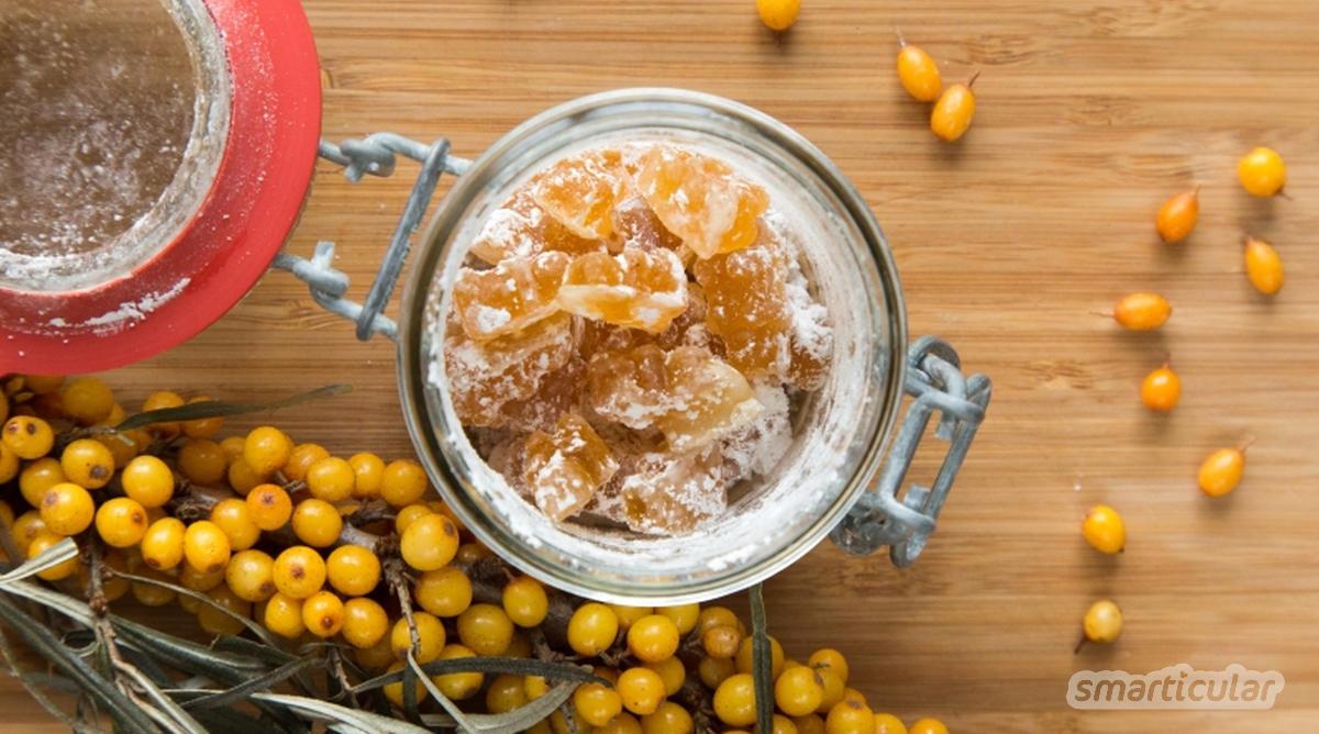 Von süß-sauren Köstlichkeiten bis hin zu außergewöhnlichen, herzhaften Speisen: Das alles kannst du mit der regionalen Vitamin-C-Bombe Sanddorn zubereiten.