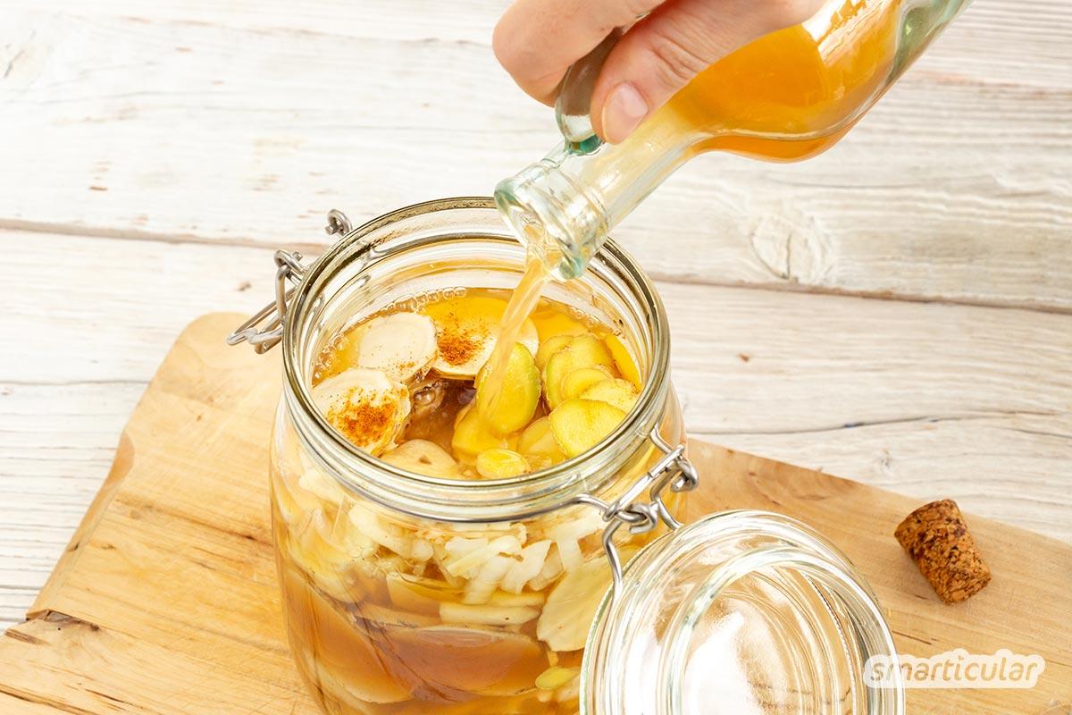 Fire Cider ist ein feuriger Sud aus Meerrettich, Ingwer, Knoblauch und Zwiebeln. Er wärmt, wirkt schleimlösend und befreit bei Husten, Schnupfen und Halsweh.