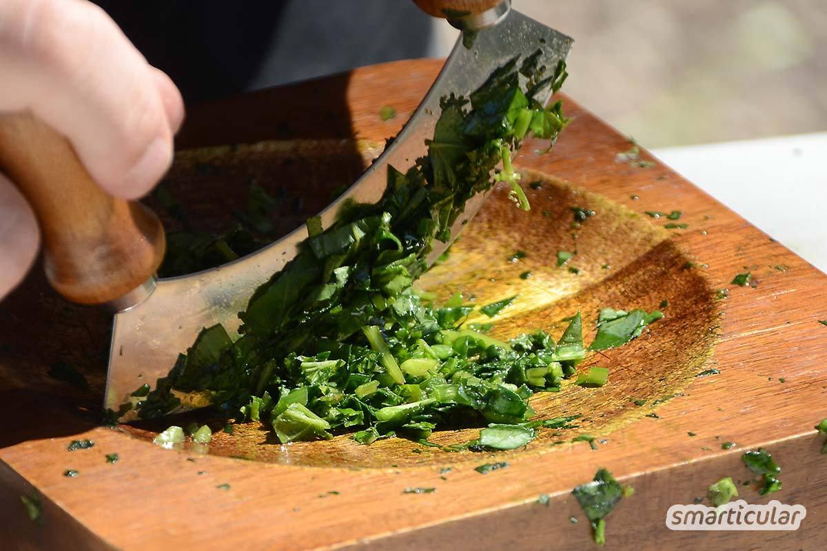 Bärlauch eignet sich ideal für ein leckeres, geschmacksintensives Kräutersalz. Mit selbst gepflücktem Bärlauch erhält man ein gesundes und günstiges Gewürz zum Verfeinern der Speisen.