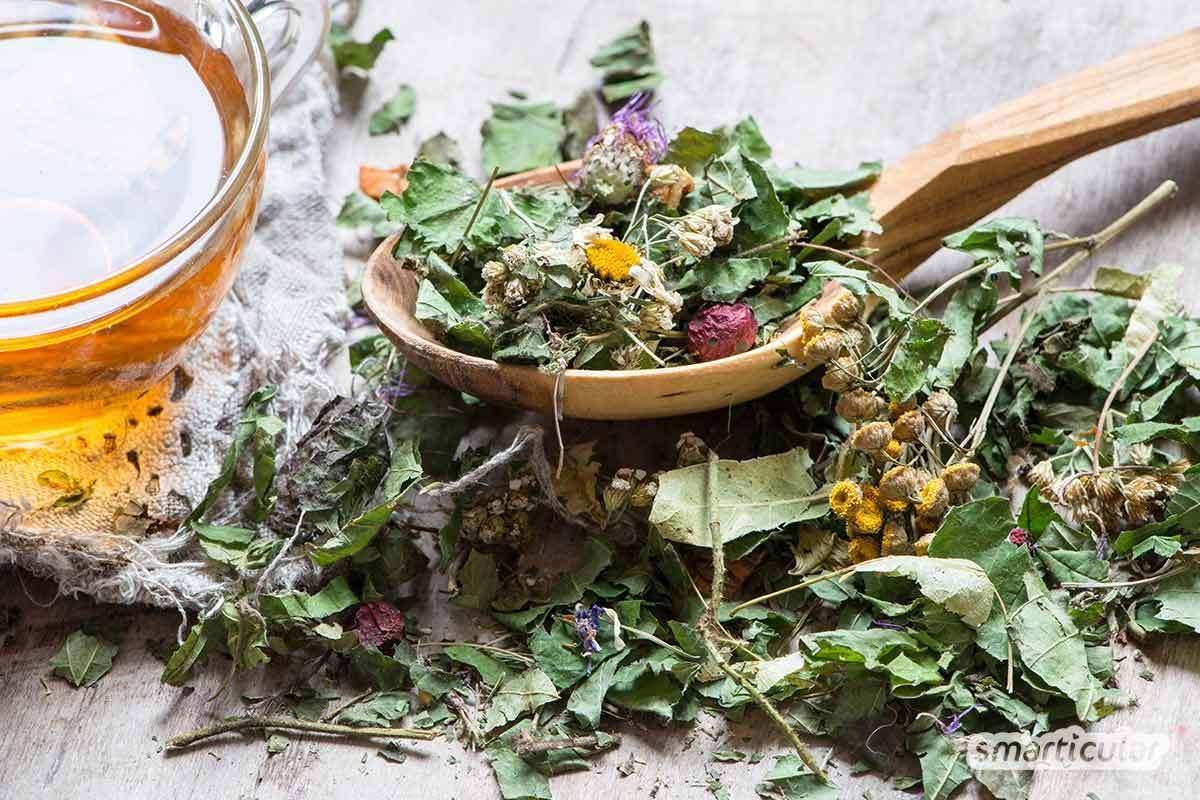 Was nützt der Bio-Tee, wenn neben biologisch abbaubarer Zellulose zur Stabilisierung Kunststoff enthalten ist? Mit diesen Tipps trinkst du deinen Tee plastikfrei.