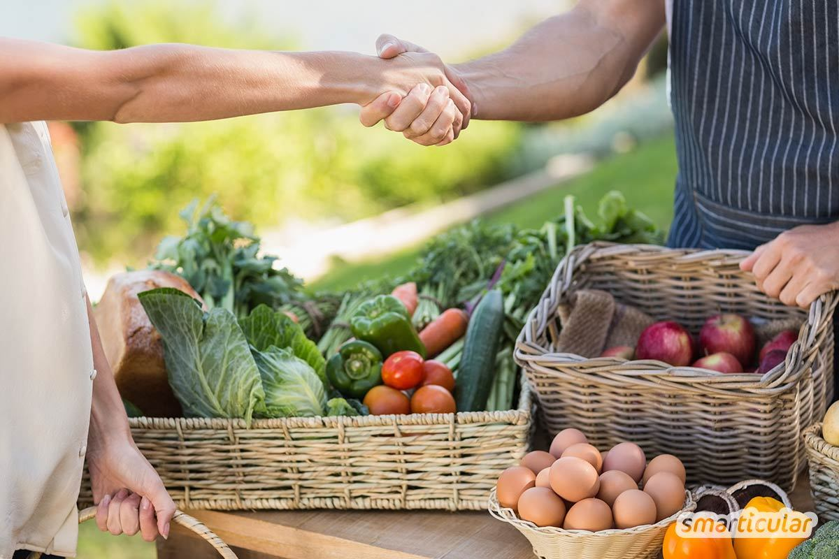Viele DIY-Alternativen zu Putzmitteln und Kosmetikprodukten enthalten essbare Zutaten. Ist es nicht verwerflich angesichts des Hungers in der Welt, Lebensmittel zum Putzen, Waschen und für die Hautpflege zu verwenden?