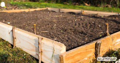 Einen Rasen oder eine Wiese in ein fruchtbares Beet zu verwandeln, muss keine Schwerstarbeit sein. Mit dieser Anleitung sparst du dir das Umgraben und lässt die Natur für dich arbeiten.