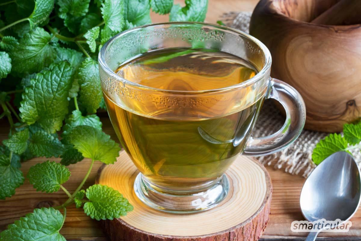 Eine selbst gemachte Teemischung lindert viele Beschwerden. In der Natur findest du dafür viele gesunde (Wild-)Kräuter - oder du ziehst sie selbst.