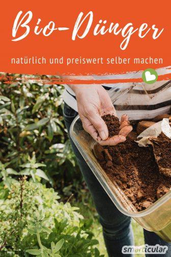 biologischen dünger selber machen aus pflanzen und