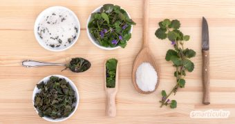 Statt Gundermann immer wieder mühsam aus dem Rasen und den Beeten zu entfernen, kannst du das Wildkraut ruhig wachsen lassen und für die Gesundheit und in der Küche nutzen.