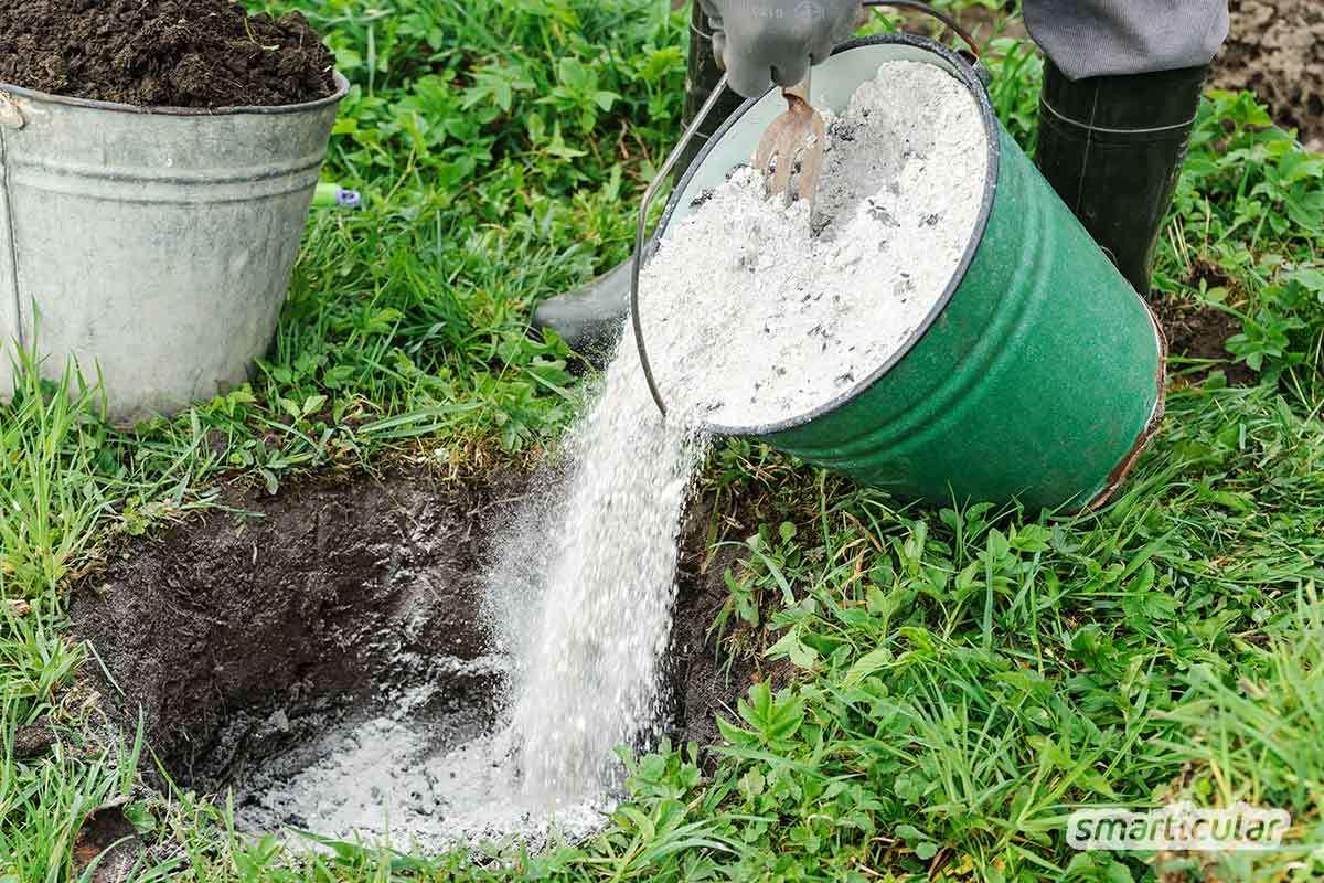 Bio-Dünger lässt sich leicht selbst herstellen: dafür eignen sich Küchenabfälle ebenso wie Pflanzenreste und andere natürliche und preiswerte Zutaten aus Haushalt und Garten.