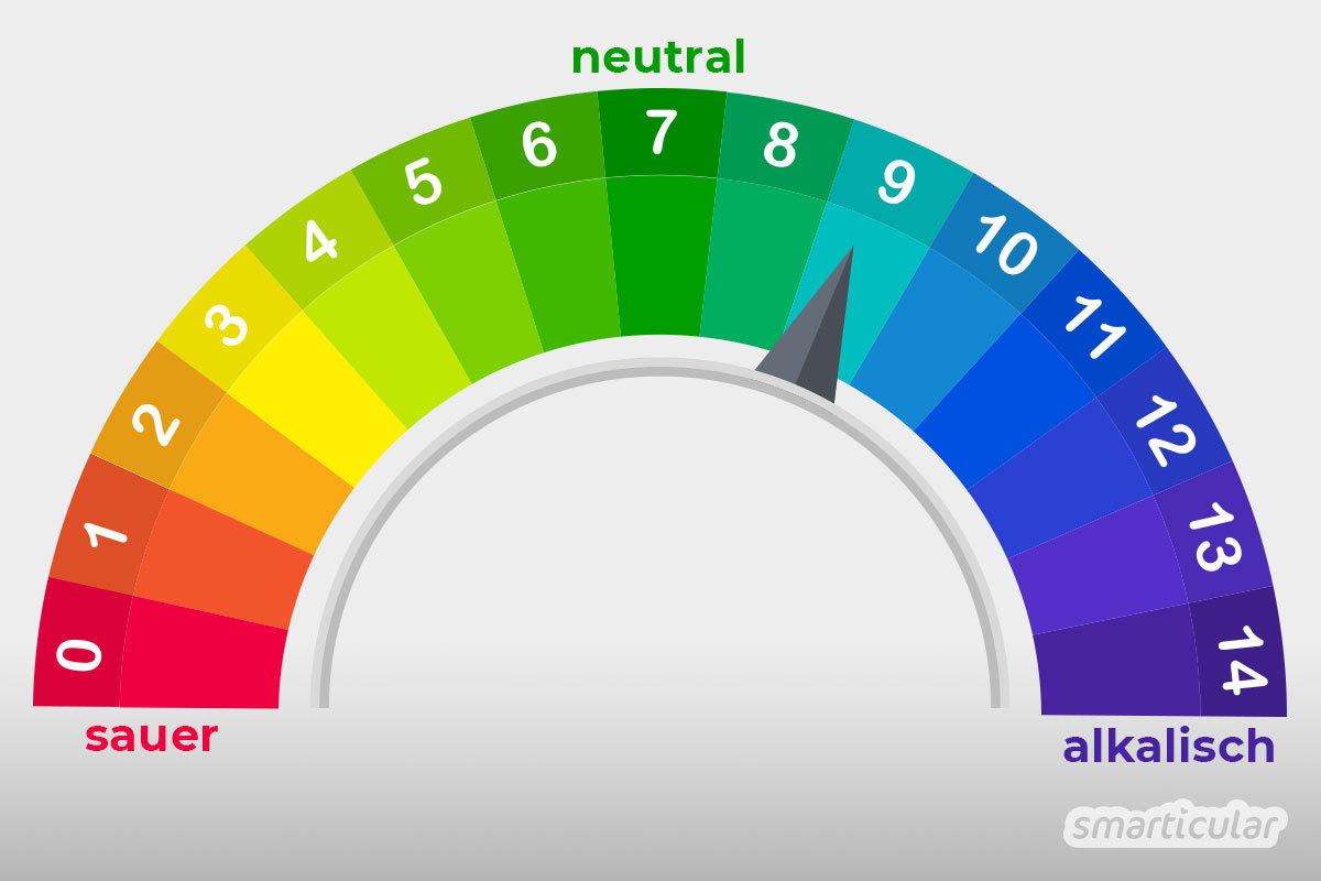 Den pH-Wert von Hausmitteln zu kennen, hat Vorteile: Alkalische Mittel helfen gegen Fett und Eiweiß, saure Mittel gegen Kalk und Rost. Die pH-Wert-Tabelle für Hausmittel bringt Licht ins Dunkel.
